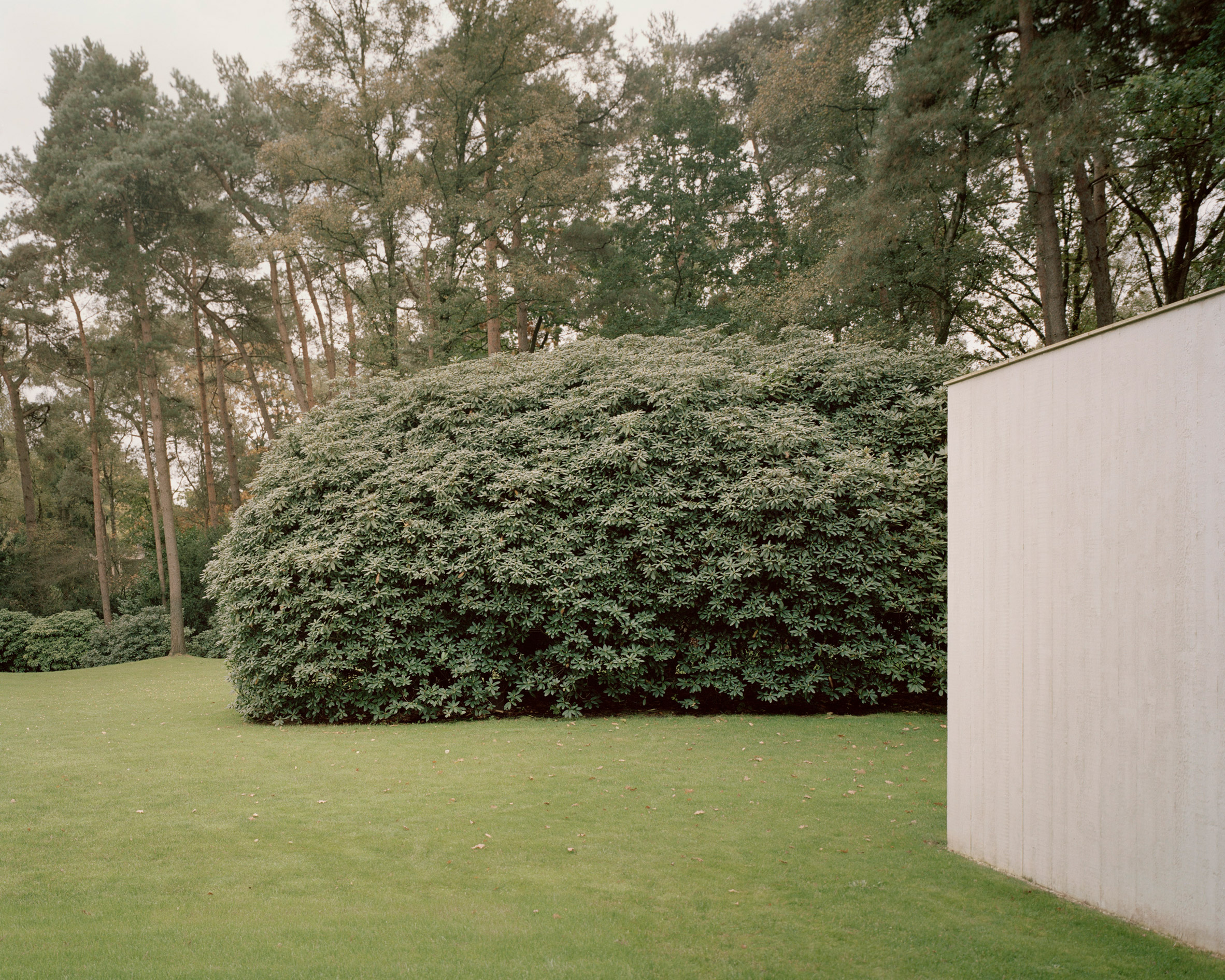 Рассел Джонс (Russell Jones) создает загородный бетонный дом в голландском лесу